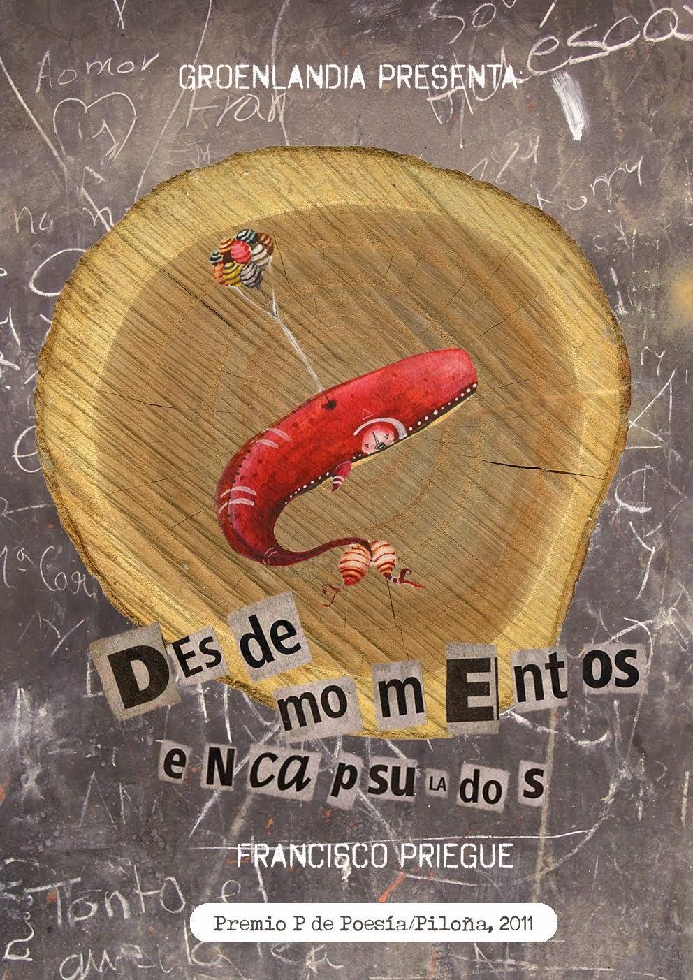 """DESDE MOMENTOS ENCAPSULADOS"" (Groenlandia, 2013)"