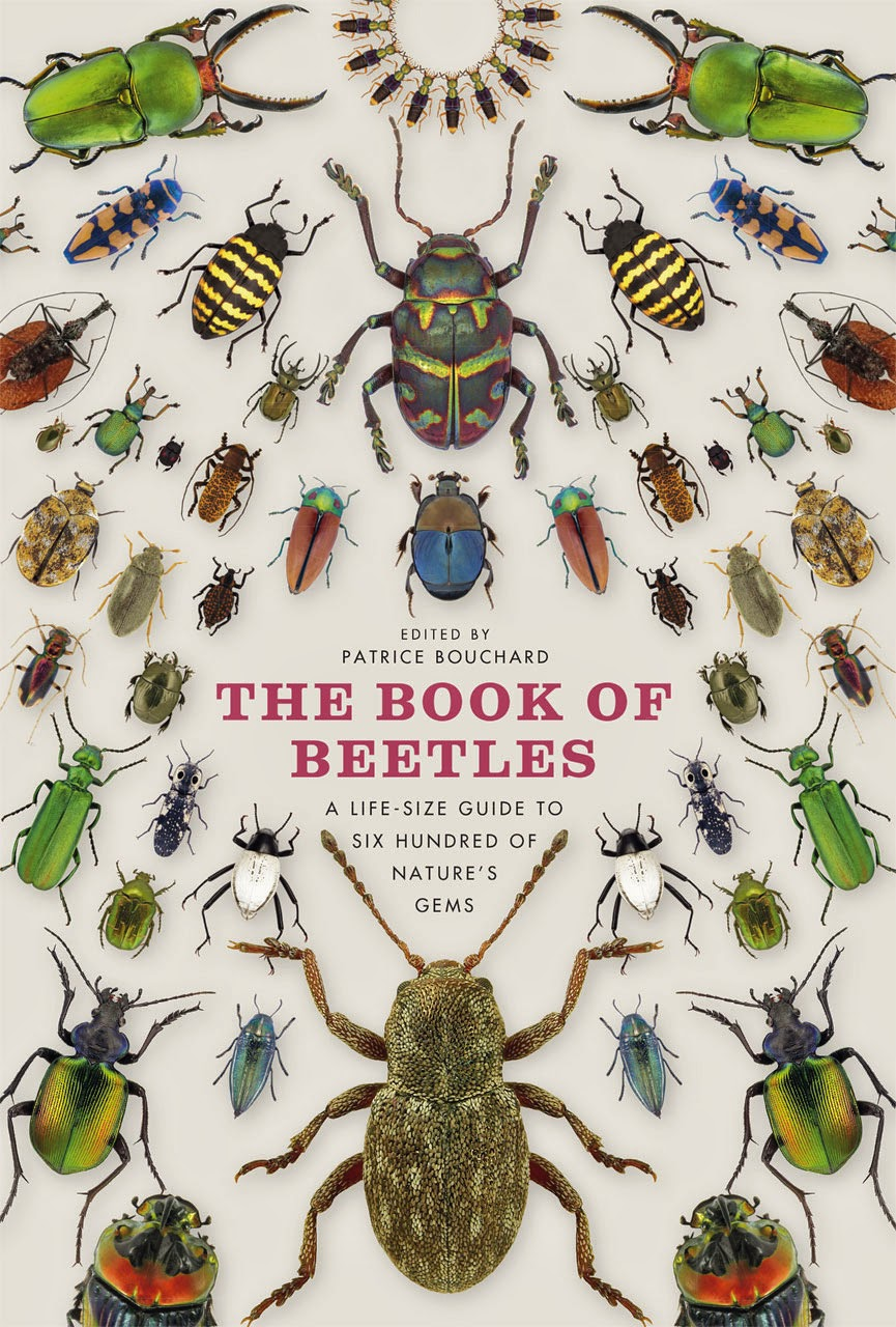 """the books of beetles"" - Patrice Bouchard"