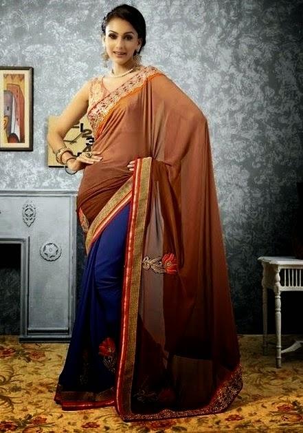 Designer Sarees with Designer Blouses Silhouettes