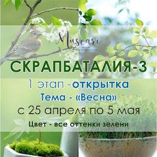 I этап СКРАП БАТАЛИИ - 3