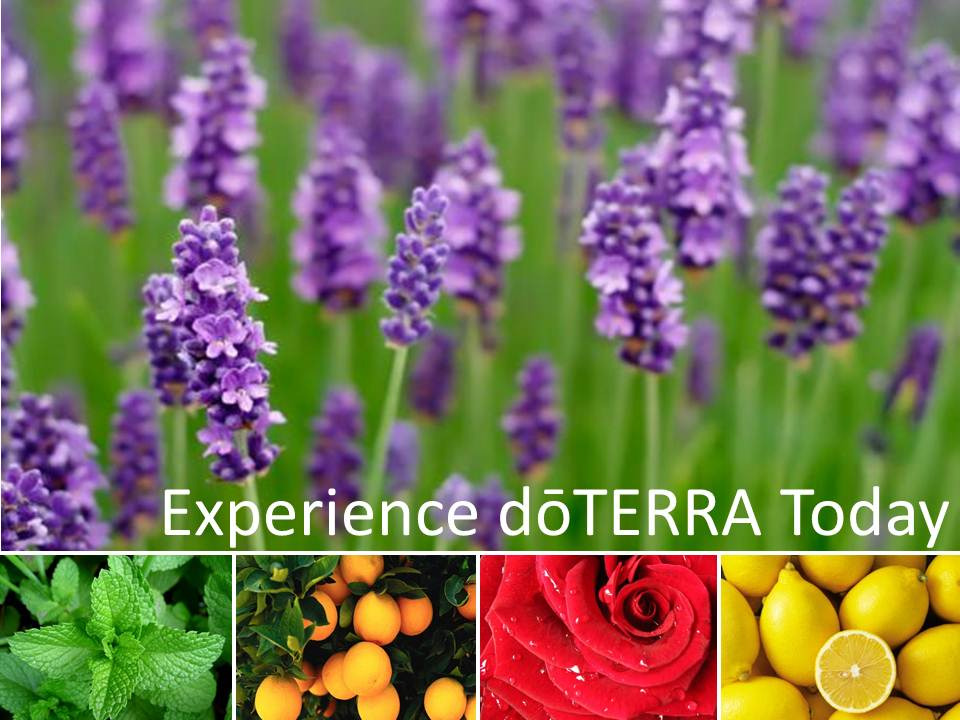 DoTerra Essential Wellness