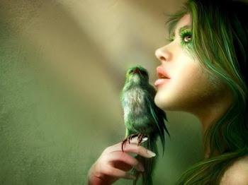 Un pájaro sin cielo cae al olvido