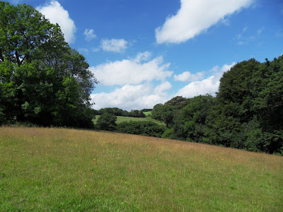 Countryside near Golant Cornwall