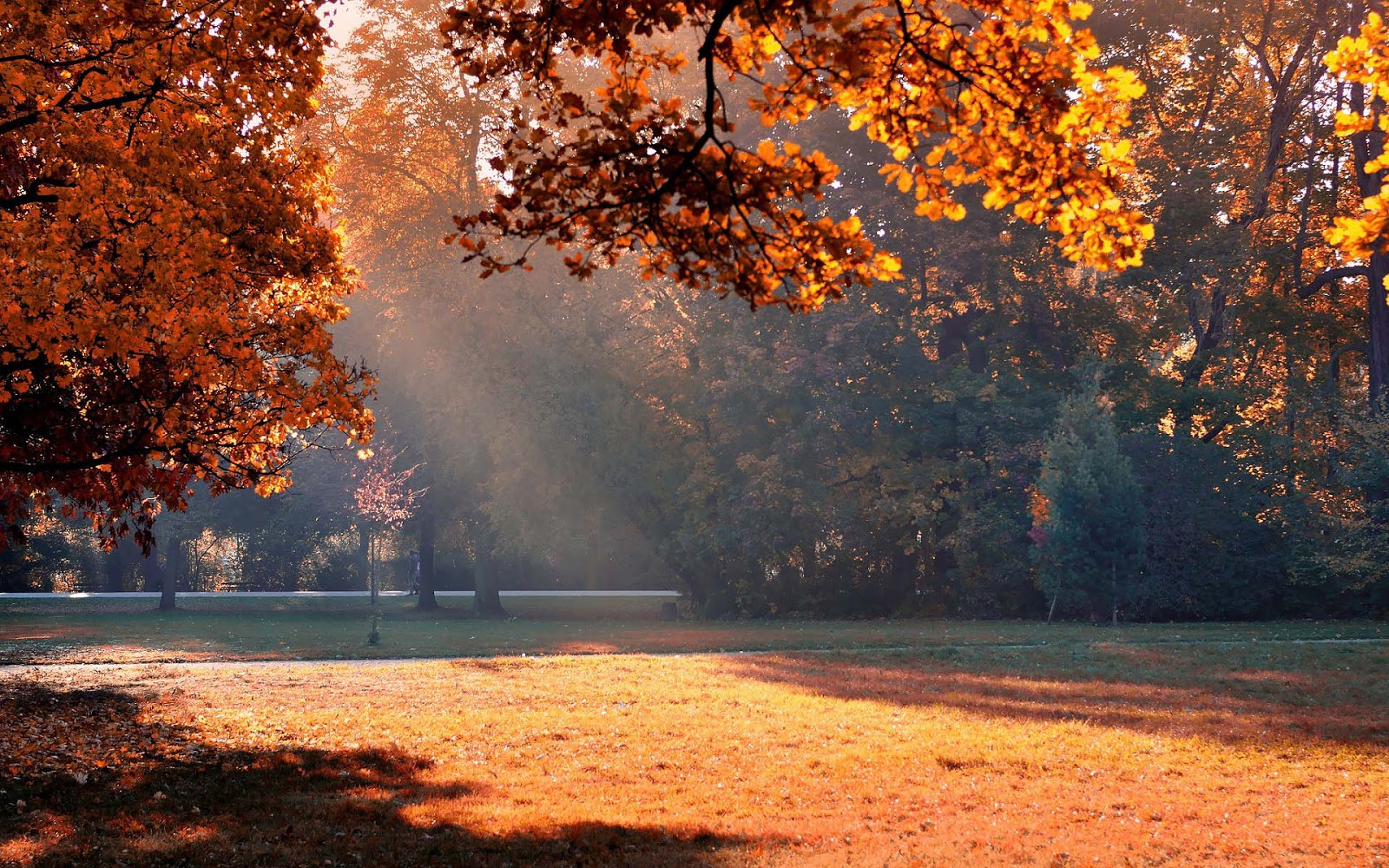 Herfst Wallpapers (herfstfoto's) | Mooie Leuke ... Wallpapers Bureaublad