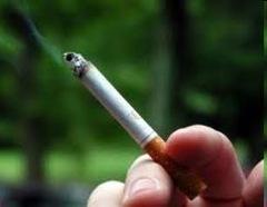berita aneh unik tentang perokok
