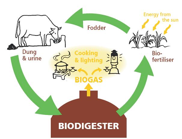 skema biogas
