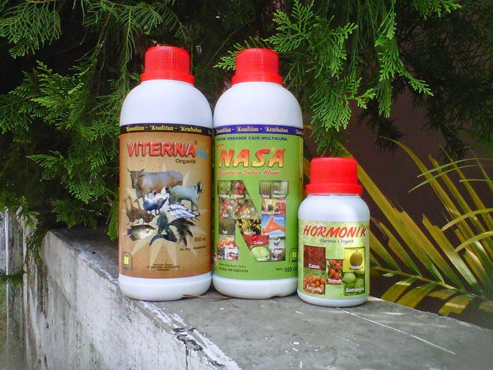 produk-nasa-untuk-vitamin-ternak-molting-pada-bebek-petelur