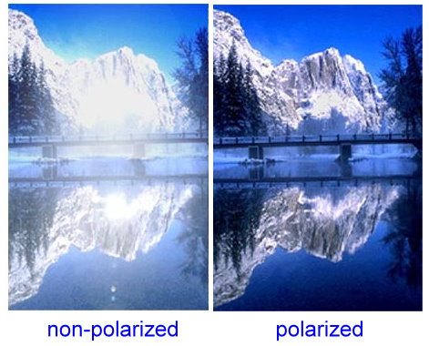 Polarized Vs Non Polarized Sunglasses For Skiing | Louisiana ...