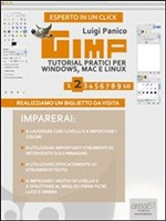 Gimp. Tutorial pratici per Windows, Mac e Linux. Livello 2 - eBook