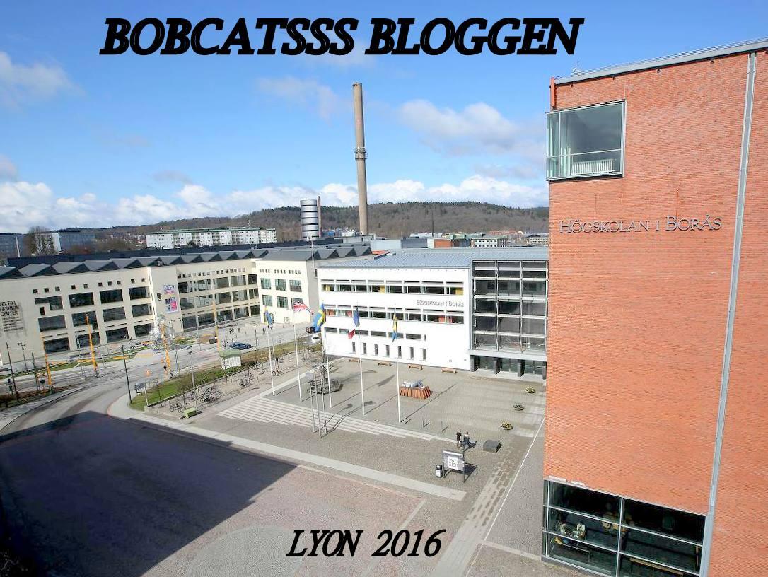 BobcatsssBloggen
