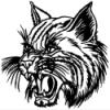 Thayer Bobcats
