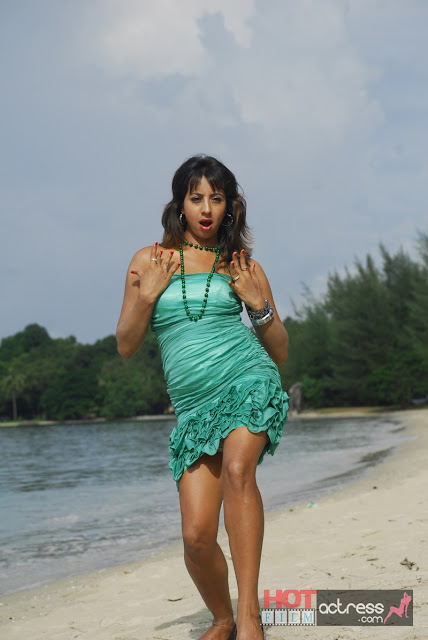 jvr 3165 Telugu Actress Sanjana Beach Hot Stills