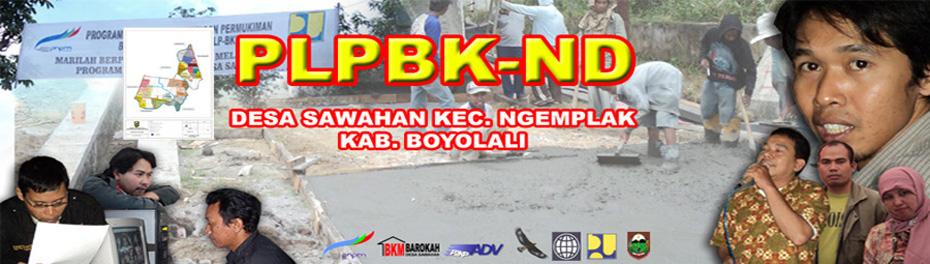 PNPM-BKM BAROKAH SAWAHAN