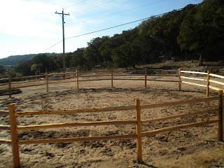 Деревянный забор. Фото 82