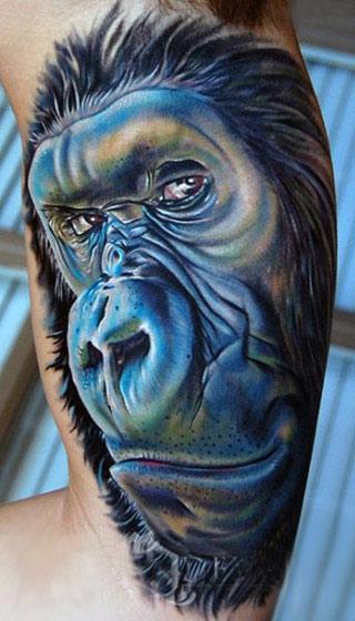 ttuaje de gorila que nos mira desafiante de reojo, en colores muy vivos