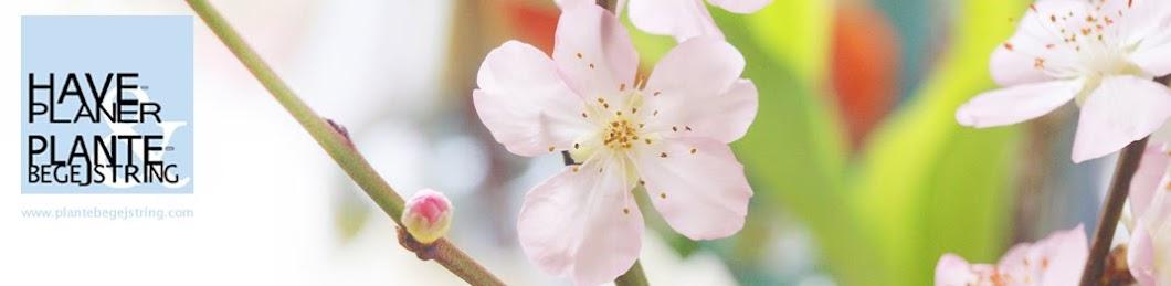 HavePlaner og PlanteBegejstring