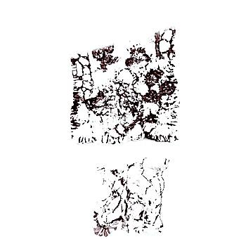 Terrain of linen