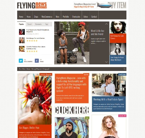 Flyingnews - Responsive WordPress Magazine Theme