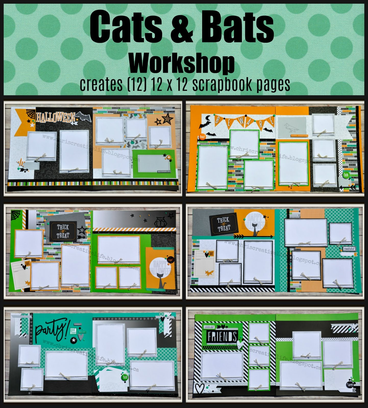Cats and Bats Workshop