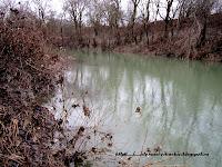 весенняя рыбалка на реке Абин