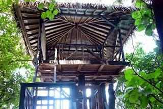 rumah pohon pulau kotok