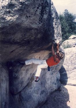 Le toit du cul de chien 1987