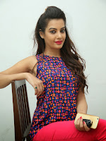 Diksha panth photos at Kavvintha press meet-cover-photo