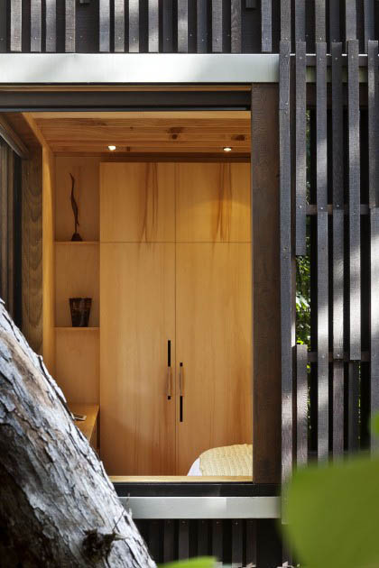 Pohutukawa house| HERBST Architects