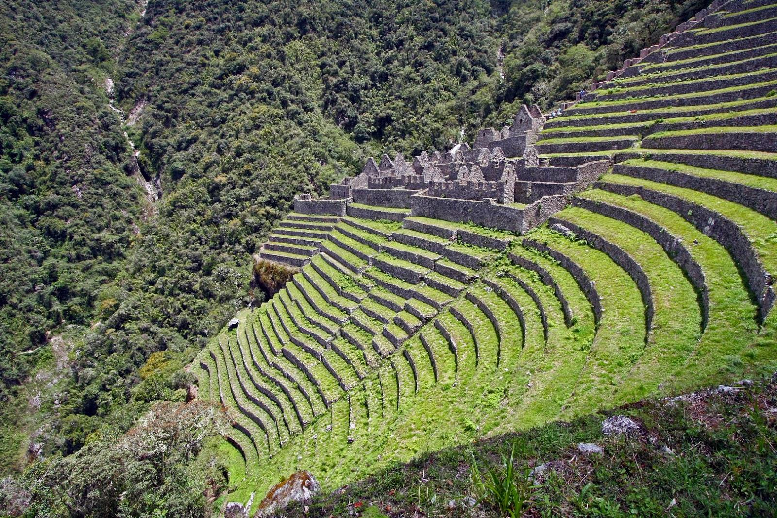 Los incas primeros paisajistas del per jardin urbano for Paisajismo de terrazas