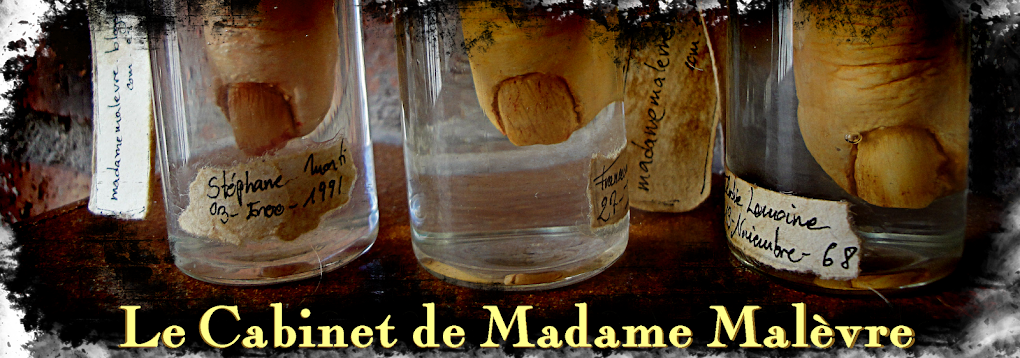 Madame Malèvre's Cabinet of Wonders