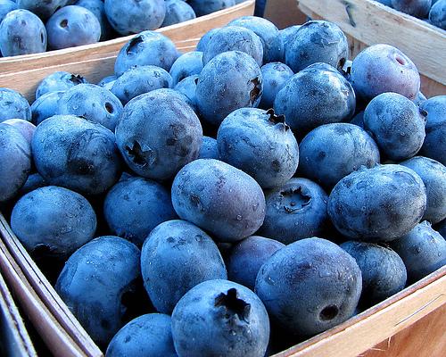 http://3.bp.blogspot.com/-slt3koFDa7I/T4haQhpjt9I/AAAAAAAAFYs/Y-cwhr6hdX4/s1600/blueberries.jpg