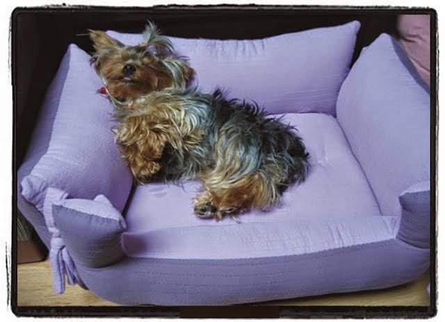 Лежанку собаке своими руками