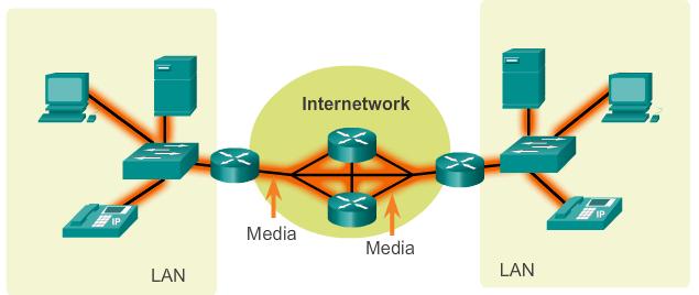 Inilah 3 Komponen Dalam Jaringan Dasar bangett media