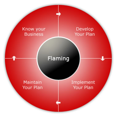 Develop And Implement A Business Plan