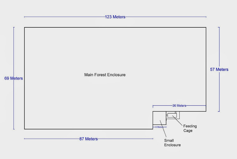 Map of the enclosure - with dimensions