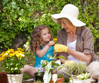Grandmother and granddaughter planting a garden