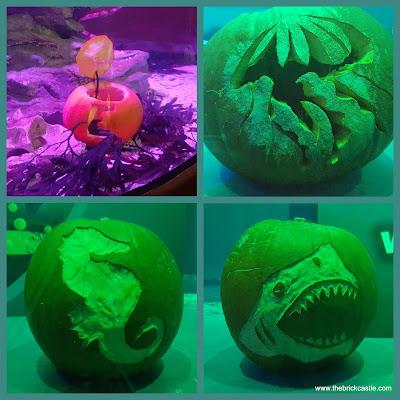 Underwater carved pumpkins halloween sealife