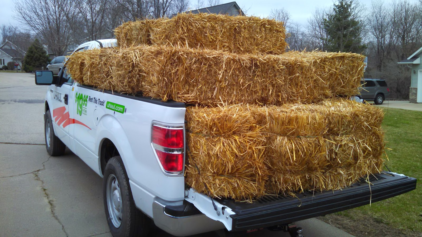 I bought a pickup truck load of 25 straw bales for my straw bale garden