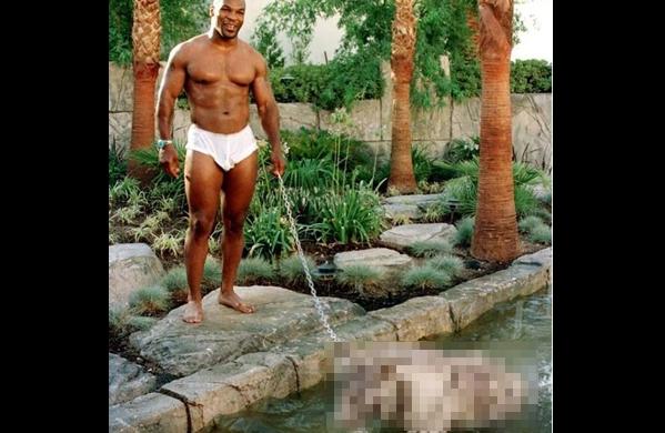 Binatang Peliharaan Mike Tyson