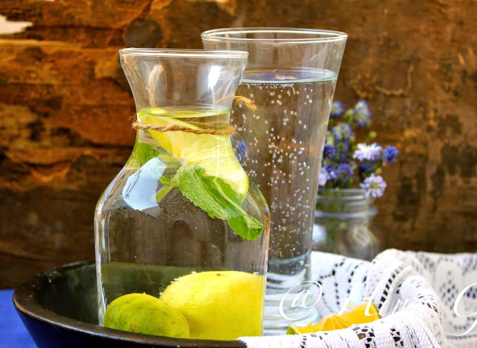 Lime and Mint Virgin Mojito Recipe