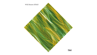 "Listen to Wild Beasts unreleased track ""Stray"""