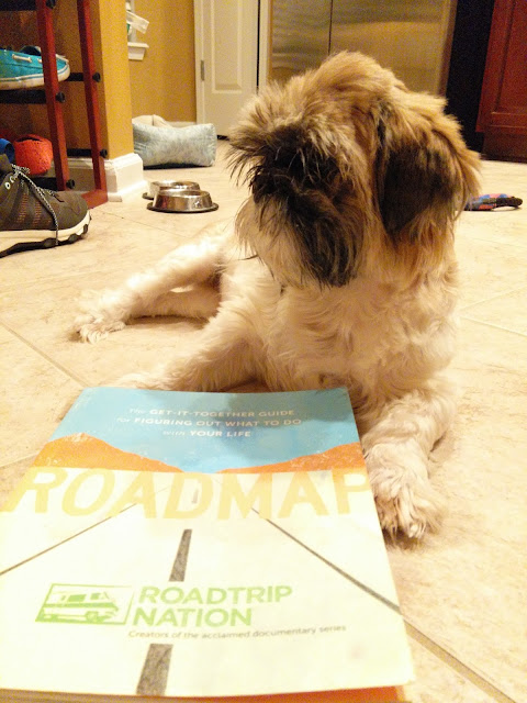 Rosie the dog of Furry Reads reading Roadmap by Roadtrip Nation