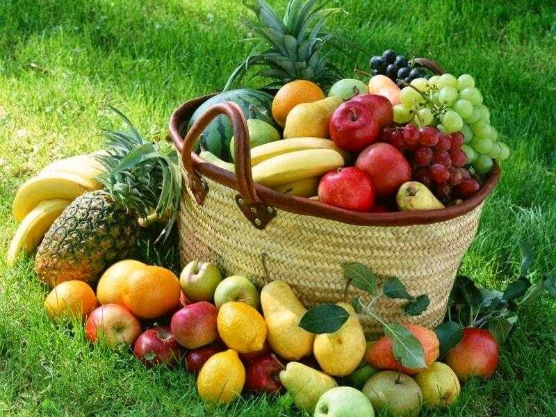 Beberapa Makanan yang Bisa Menurunkan Berat Badan