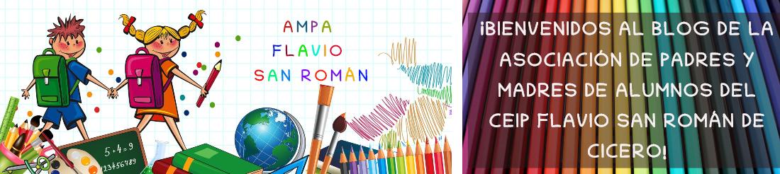 AMPA Flavio San Román