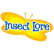 Insect Lore Butterfly Food Recipe