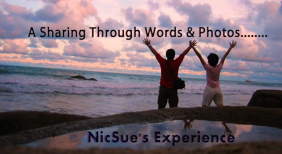 NicSue's Experience