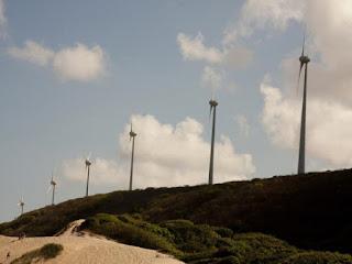 Nordeste desponta como polo da energia eólica brasileira