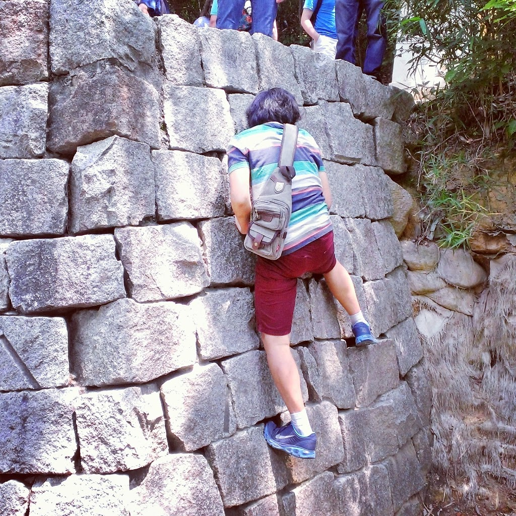 Ninja climbing challenge