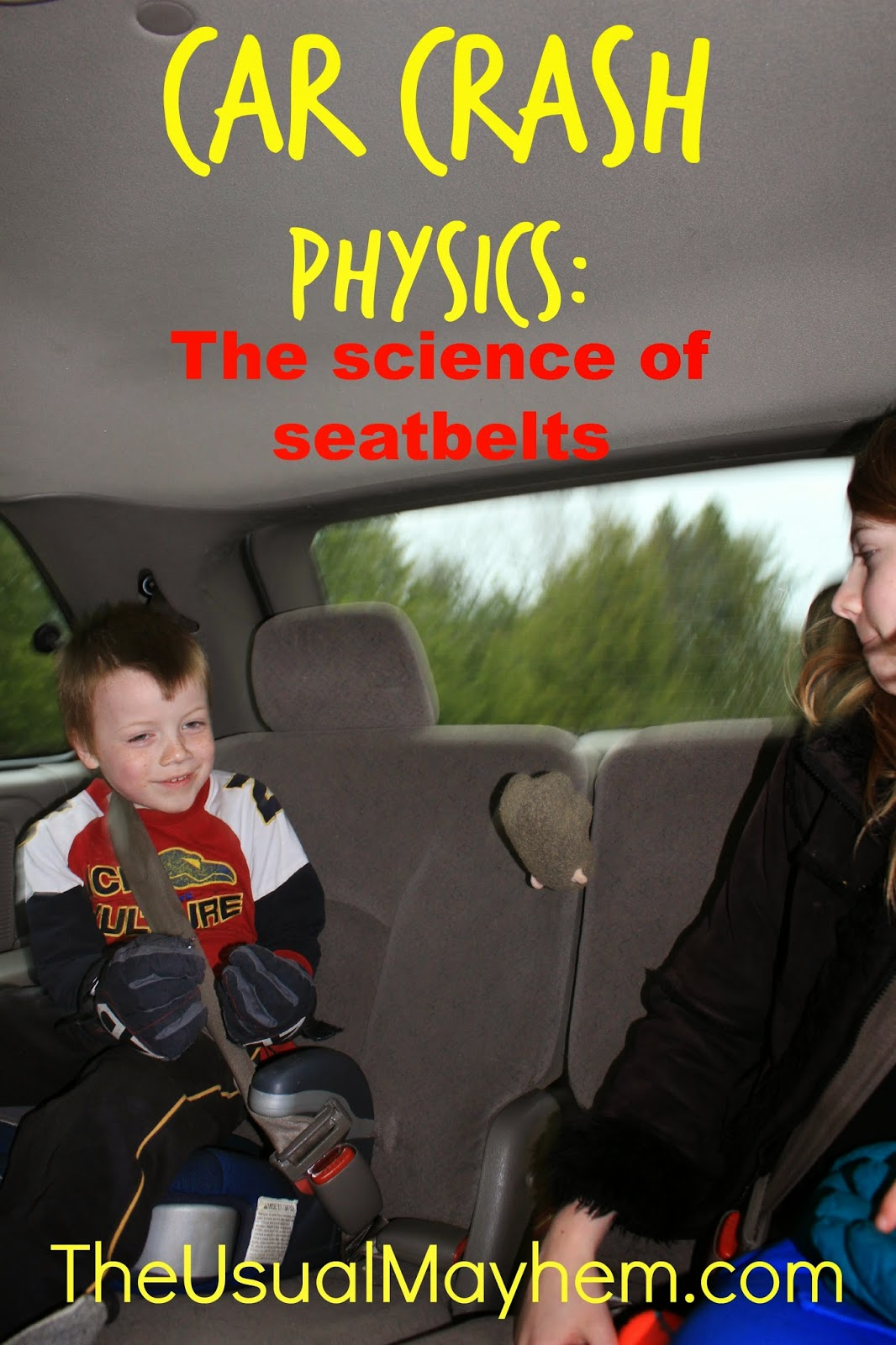 The Science of Seatbelts: Car Crash Physics