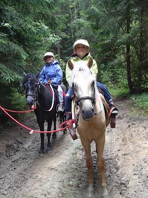 Orawa, Lipnica Wielka, Babia Góra, konie, kucyki, jazda konna
